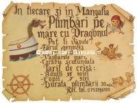 Tarife si Telefon contact Vaporasul Dragonul
